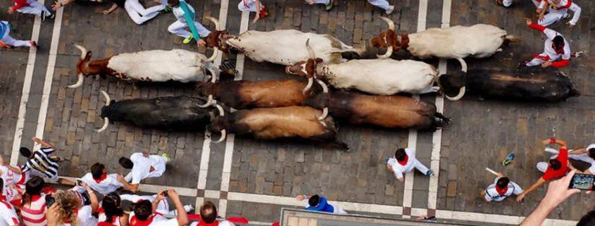 Baskiens städer – Pamplona