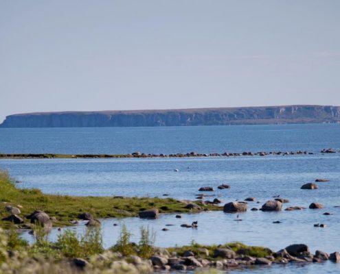 Gotland och Stora Karlsö