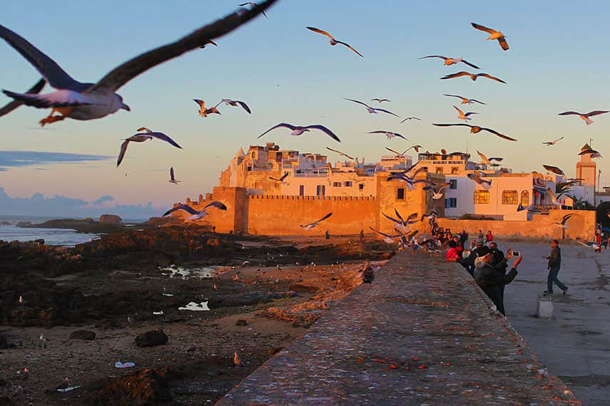 Besök Marocko